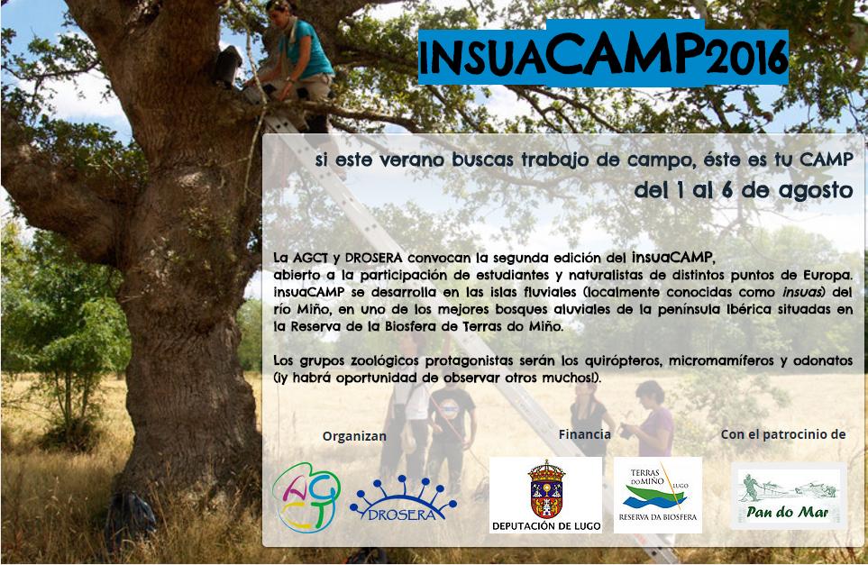 BECAS INSUA CAMP 2016