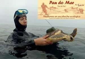 CEMMA - Pan do Mar